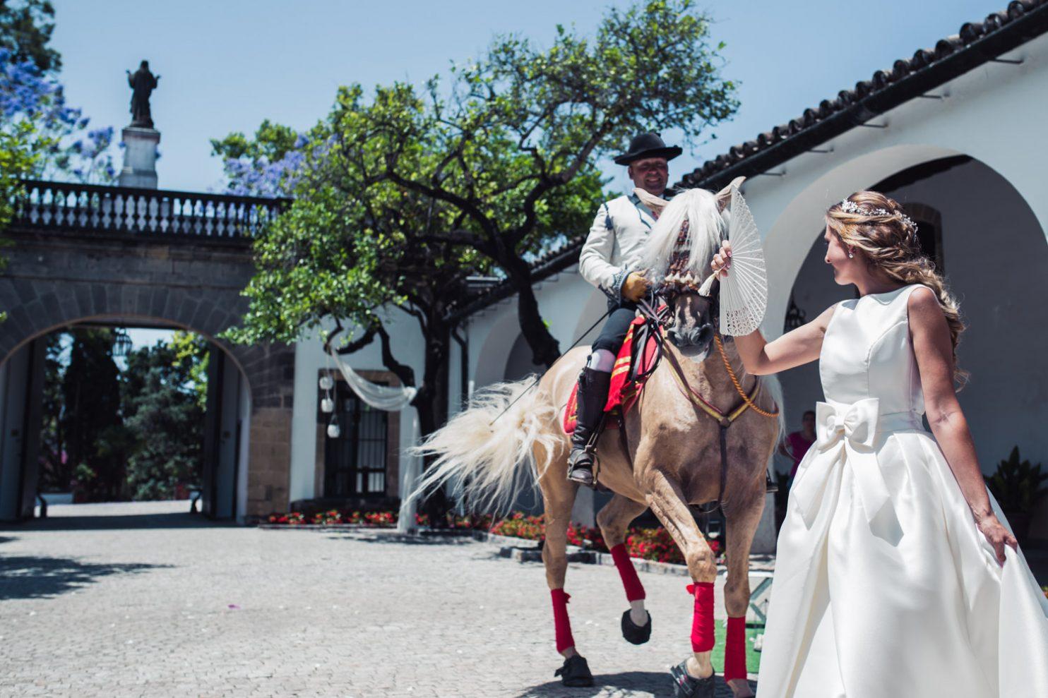 boda en bodegas fundador en Jerez de la Frontera